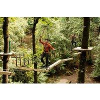 Zip Trek For Two At Treetop Trek Picture