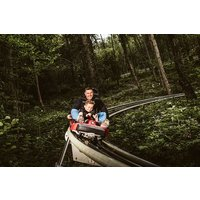 Zip World Fforest Coaster Shared Sled Ride – Adult and Child Special Offer - Adult Gifts