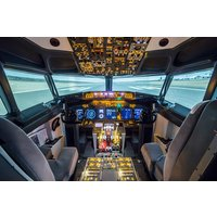 30 Minute Boeing 737-800 Flight Simulator Experience Picture