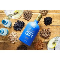 Gin Masterclass For Two At 45 Gin School Picture