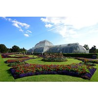 Family Visit to Kew Gardens and Palace for Two Adults and Two Children - Children Gifts