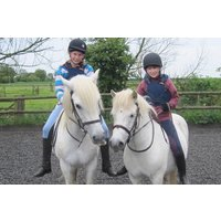Pony Day at Willow Farm - Farm Gifts
