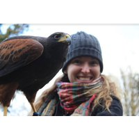 2 for 1 Hawk Walk for Two at Hawksflight Falconry - Falconry Gifts