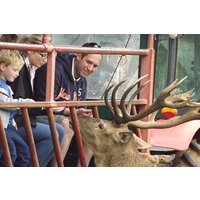 A Day on The Farm with a Deer Safari for Two Adults at Snettisham Park - Farm Gifts