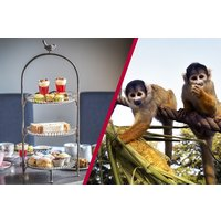 Afternoon Tea With Fizz At Gordon Ramsay's York And Albany And London Zoo For Two Picture