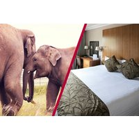 Adult Entry To Whipsnade Zoo With Overnight Stay At Aubrey Park Hotel Picture