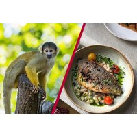 Three Course Meal For Two At Gordon Ramsay's York And Albany And London Zoo Picture