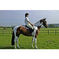Horse Riding for Two at Halsall Riding Centre - Horse Gifts