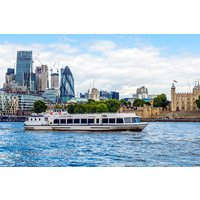 St Katharine to Thames Barrier or Vice Versa Boat Cruise Family Return - Thames Gifts