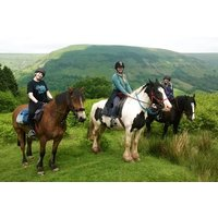 One Hour Horse Riding Experience for Two at Grange Trekking - Horse Gifts