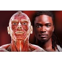 Body Worlds Museum Experience for Two Adults - Days Out Gifts