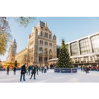 Christmas Ice Skating with a Glass of Prosecco and Cake for Two at the Natural History Museum Ice Rink - Prosecco Gifts