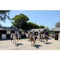 Western Adventure Day - Special Offer Picture