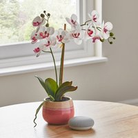image-Artificial Orchid Cream in Pink Pot 48cm Cream