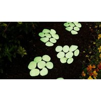 '100-pack Of Glow-in-the-dark Garden Pebbles - 7 Colours