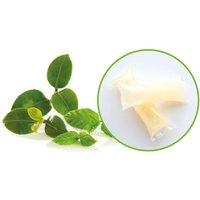 Splosh Hand Wash Gel Concentrate Refills x 8 - Mint & Green Tea - 136ml