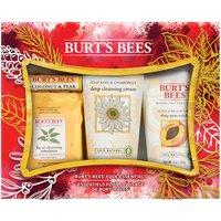 Burts Bees Face Essentials Gift Set