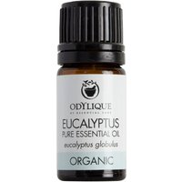 Odylique Organic Eucalyptus Essential Oil - 5ml