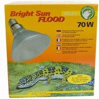 Lucky Reptile Bright Sun FLOOD Desert 70W