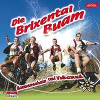 Die Brixental Buam - Sonnenschein und Volksmusik