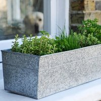 Window trough herb pot combination