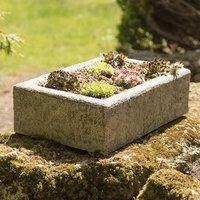 Sempervivum collection and large alpine trough