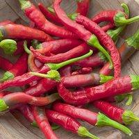 chilli Piccante di Cayenna approx 300 seeds