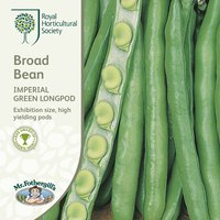 Product photograph showing Bean Broad Imperial Green Longpod Approx 50 Seeds