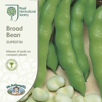 Product photograph showing Bean Broad Suprifin Approx 50 Seeds