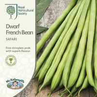 Product photograph showing Dwarf French Bean Safari Approx 100 Seeds