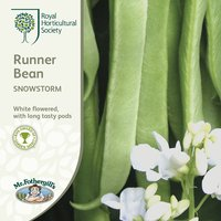 Product photograph showing Bean Runner Snowstorm Approx 40 Seeds