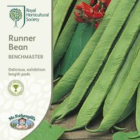 Product photograph showing Bean Runner Benchmaster Approx 40 Seeds