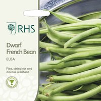 Product photograph showing Bean Dwarf French Elba Approx 100 Seeds