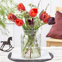 Image of Brandy snap tulip collection 1 collection