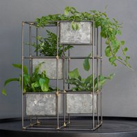 Product photograph showing Starter Fern Plant Tower Combination