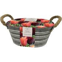 Tulip trough gift set