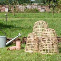 Image of Bamboo cloche medium