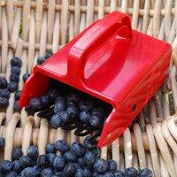 Image of Berry picker 1 left