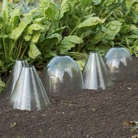 Image of Open topped glass cloche set of 3 domed