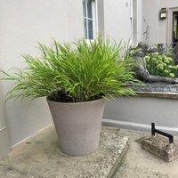 Planter vaso conico primitivo grey