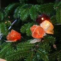 Product photograph showing Autumn Rose String Lights