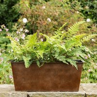 Product photograph showing Plant Trough - Long Dark Rust