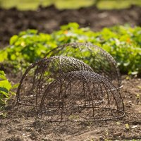 Image of Set of 3 rabbit proof dome cloches - brown rustic brown