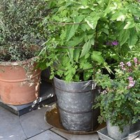 Planter with surround support