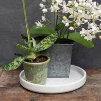 Image of Marble indoor pot tray 25 × 3.5cm