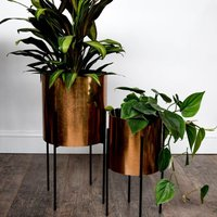 Product photograph showing Luso Plant Stand - Black