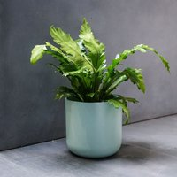 Lisbon planter mint green 15cm