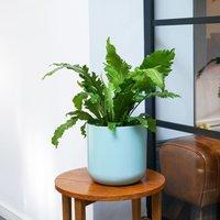Image of Lisbon planter mint green 19.5cm