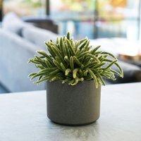Leon granite style planter 14.5cm