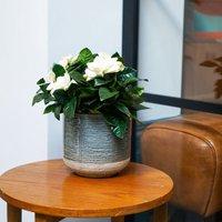 Image of Vasto denim planter 17cm